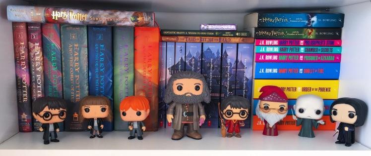HP Shelf.jpeg